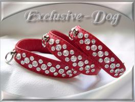 Halsband Chihuahua Halsband by EXCLUSIVE-DOG