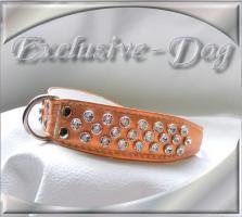 Foto 2 Halsband Strasshalsbänder mit SWAROVSKI ELEMENTS Hundehalsband ''EXCLUSIVE-DOG''