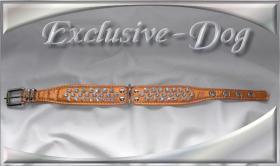 Foto 3 Halsband Strasshalsbänder mit SWAROVSKI ELEMENTS Hundehalsband ''EXCLUSIVE-DOG''