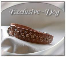 Halsband '' Fawn Brown '' made by Exclusive-Dog