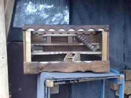 Hamsterkäfig/Mäusekäfig aus Holz! Neu!