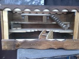 Foto 5 Hamsterkäfig/Mäusekäfig aus Holz! Neu!