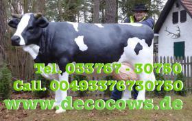 Foto 3 Hast Du einen Balkon und möchtest das eine Deko Kuh auf den Balkon steht … ja dann ...