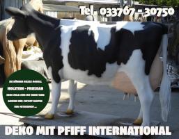 Hast du schon gehört was denn holstein friesian deko Melk Kuh lebensgross oder Leni von der Alm lebensgross ...