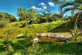 Foto 4 Haus in schöner Lage mit großem Grundstück