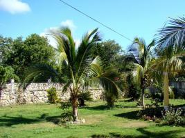 Foto 4 Haus und zwei Appartements in Juan Dolio