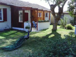 Foto 4 Hausteile mit Garten für Tierfreunde in Südwestfrankreich, Atlantik