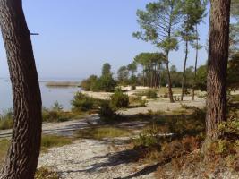 Foto 15 Hausteile mit Garten für Tierfreunde in Südwestfrankreich, Atlantik