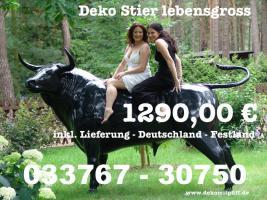 Foto 2 Heute kauf ich mir ne Deko Kuh oder Deko Pferd oder doch .... www.dekomitpfiff.de erst mal anklicken