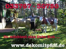 Foto 4 Heute kauf ich mir ne Deko Kuh oder Deko Pferd oder doch .... www.dekomitpfiff.de erst mal anklicken