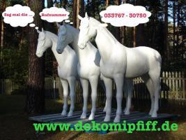 Foto 5 Heute kauf ich mir ne Deko Kuh oder Deko Pferd oder doch .... www.dekomitpfiff.de erst mal anklicken