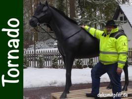 Foto 3 Heute wasche ich mein deco Horse - Modell ...