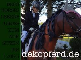 Foto 5 Heute wasche ich mein deco Horse - Modell ...