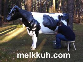 Foto 6 Hey Dein Nachar hat ne Deko Kuh im Garten… ok. dann hol Dir doch auch eine und stell Sie an den Gartenzaun ...