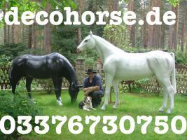 Foto 3 Hey Du hast noch kein Deko Pferd … ja dann hol Dir eins mit hufeisen ...