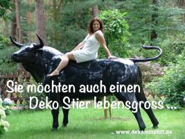 Hey hol Dir doch einen Deko Stier in Deinen Garten ..