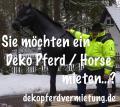 Hey warm mietest Du nicht einfach Ein Deko Pferd ???