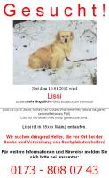 Hilfe für Lissi