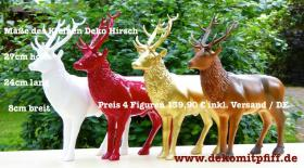 Foto 3 Hirschlein / Pferd / Kuh