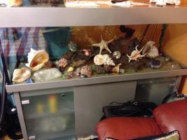 Hochwertiges Aquarium