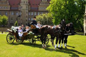 Foto 3 Hochzeitskutschen - Kutschfahrten - Kremserfahrten