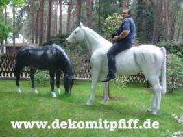 Hol Dir doch ein Deko Pferd in deinen Garten ...