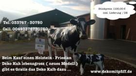 Hol Dir die jetzt... neue Holstein Deko Kuh lebensgross …...