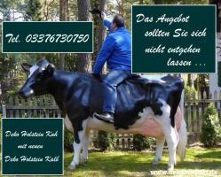Hol Sie dir beide … Holstein Deko Kuh und Deko Kälbchen ...