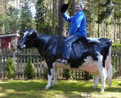Foto 2 Hol Sie dir beide … Holstein Deko Kuh und Deko Kälbchen ...