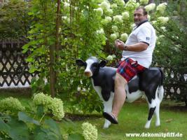 Foto 3 Hol Sie dir beide … Holstein Deko Kuh und Deko Kälbchen ...