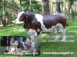 Foto 5 Holstein Deko Kuh … uvm.