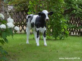 Foto 3 Holstein Deko Kuh mit Kalb …oder ...