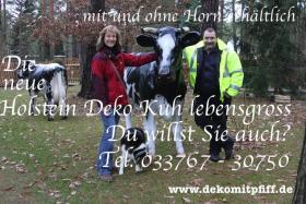 Holstein Deko Kuh lebensgross