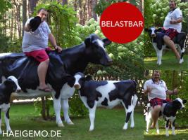 #Holstein #Friesian #Deko #Kuh #lebensgross und dazu … www.dekomitpfiff.de einfach mal vorbei sehen …01