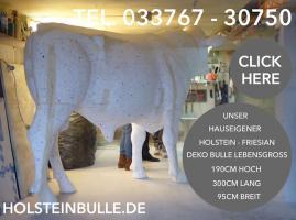 Foto 4 #Holstein #Friesian #Deko #Kuh #lebensgross und dazu … www.dekomitpfiff.de einfach mal vorbei sehen …01