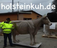 Foto 6 Holstein Kuh …. für deine Messeveranstaltung in Bern ...