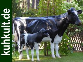 Foto 2 Holstein - Friesian Deko kuh - Neues Modell ….