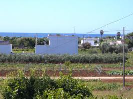 Foto 6 Hübsches Ferienhaus mit Garten 400 m zum  Meer in San Pietro in Bevagna, Apulien
