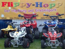 Foto 7 Hüpfburgverleih Flippy-Hopp