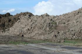 Humus - Erde - Mutterboden