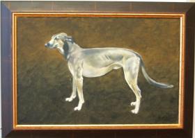 Foto 2 Hunde