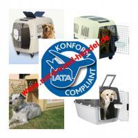 Hunde-Flugtransportboxen-Verkauf-Verleih-Vermietung:Nord-Süd-Handel