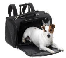 Foto 7 Hunde-Flugtransportboxen-Verkauf-Verleih-Vermietung:Nord-Süd-Handel
