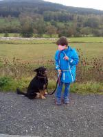 Foto 3 Hunde Herrchen Frauchen Coaching Trainer : Herborn Mittel Hessen