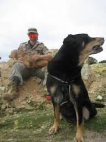 Hunde Outdoor - Sport u Agillity Cross Woorkshop Ratingen Samstags Sonntag