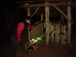 Foto 9 Hunde-Schulung , als, Geschenkgutschein 2013. Hund Mensch Training , Beratung Erziehung Training