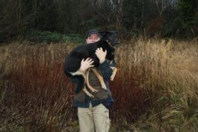 Foto 14 Hunde-Schulung , als, Geschenkgutschein 2013. Hund Mensch Training , Beratung Erziehung Training