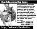 HundeSitter HundeTagesmutter Essen Ruhr