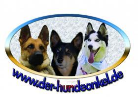 Hundefutter und Tierbedarf von REICO