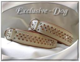 Hundehalsband  '' Big Neat '' made by EXCLUSIVE-DOG